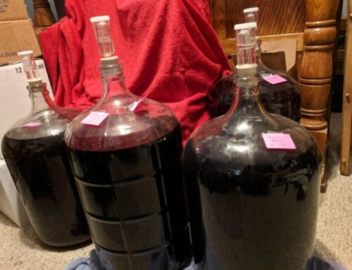 Fruit Wine Making Guide, Part Five: Fining, Back-Sweetening, Smoothing, and Flavoring